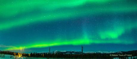 Nordlichter in Yukon, Kanada Nature Tours of Yukon