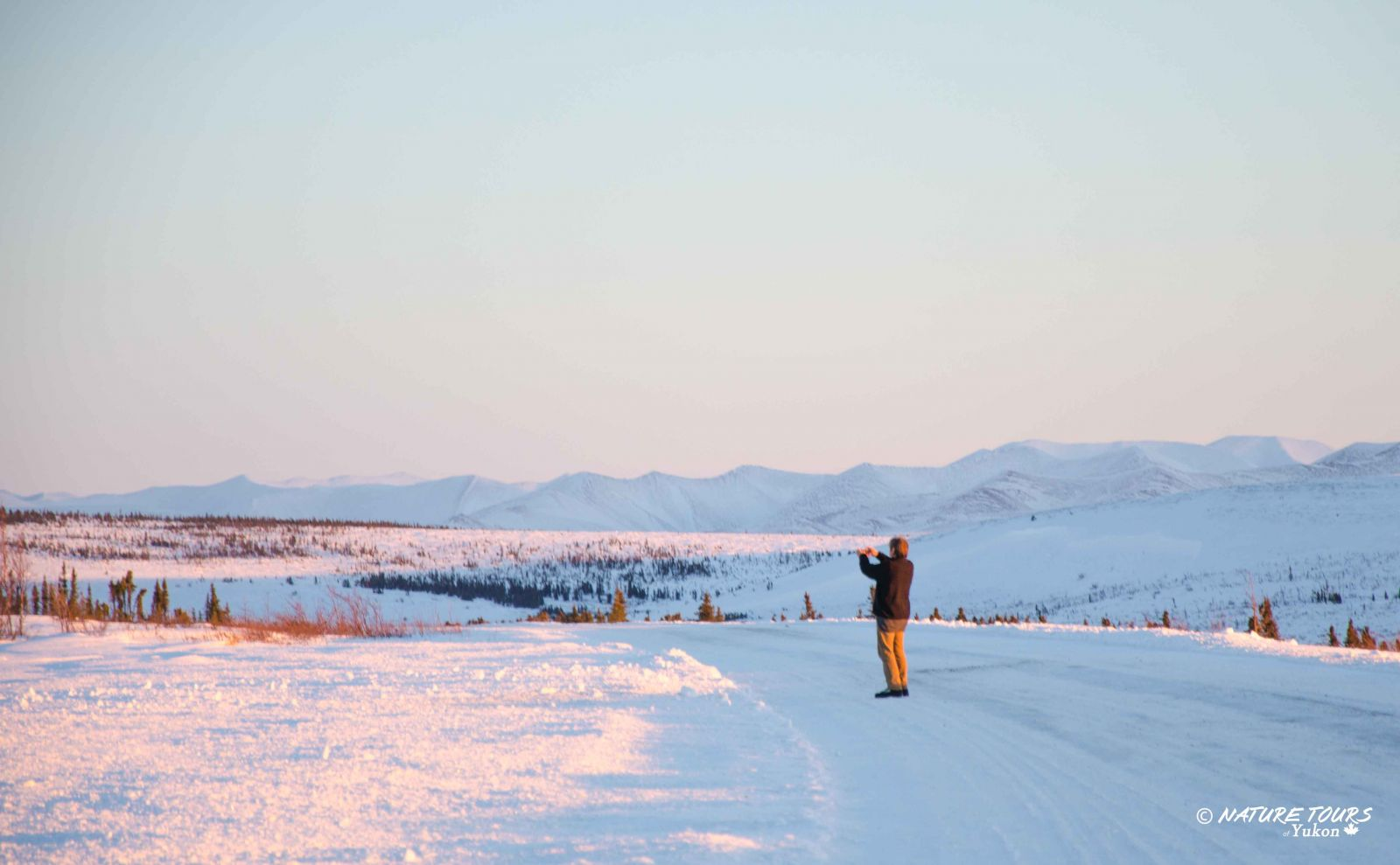 Arctic Discovery Tour - Photography safari into the Arctic