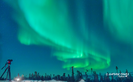 Northern Lights - Arctic Circle - Yukon Canada