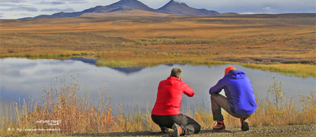 Kanada Polarkreis und Arktis foto tour mit Nature Tours of Yukon