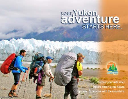 Kluane Nationalpark - Yukon - Nature Tours of Yukon
