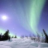 auroraborealis yukon - Northern Lights viewing whitehorse