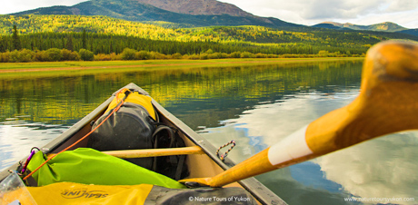 teslin river - an easy nature adventure in Yukon, Canada