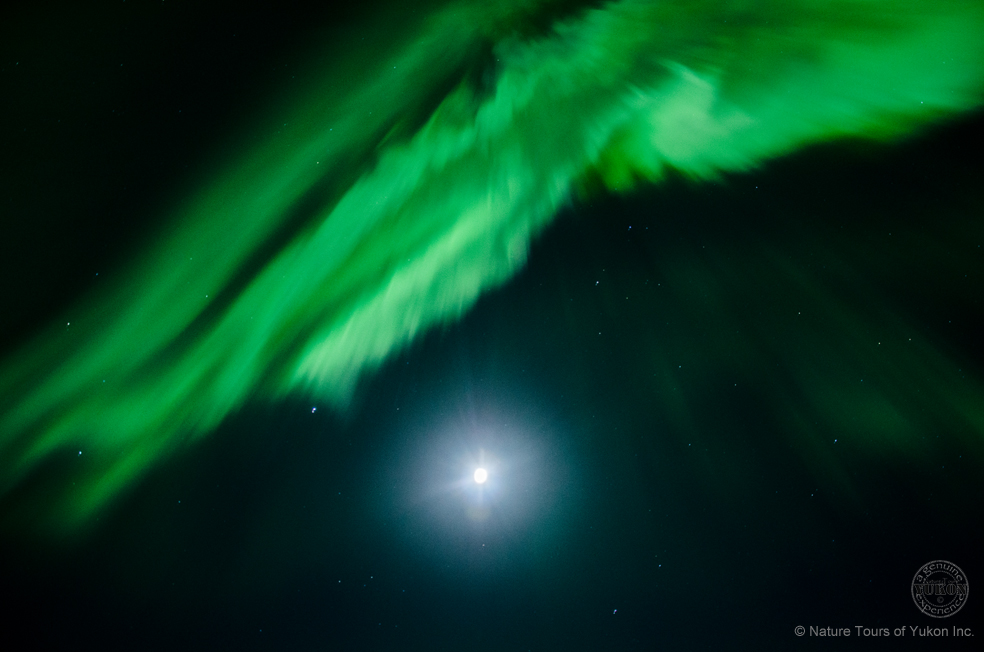 Full moon and seeing the aurora.