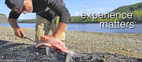 experience matters nature tours of yukon