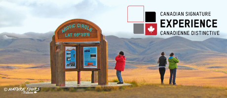 Arctic Circle Tour in fall with Nature Tours of Yukon