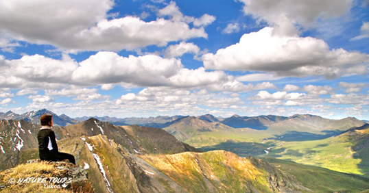 natue tours of yukon - kluane hiking tours