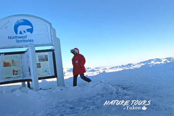 Nature tours yukon  -NWT - arcti croad trip