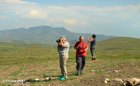guided self drive -Dempster Highway