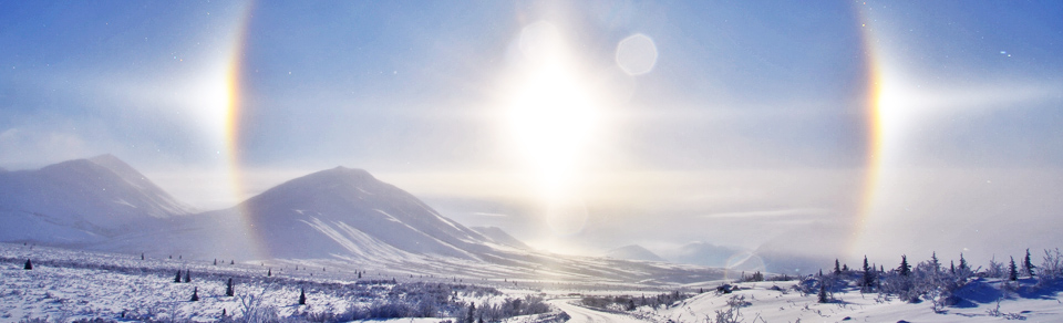 Sundogs-Nature Tours of Yukon