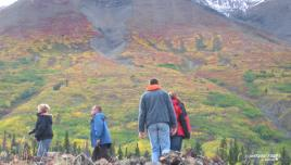 Kluane in Fall