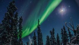 Aurora Borealis in Winter Wonderland Yukon, Canada