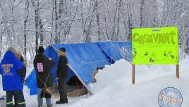 Yukon Quest - Dawson musher camp
