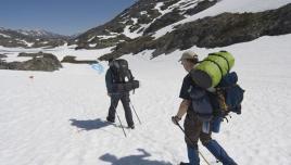 Chilkoot Trail, Alaska. walking on a glacier
