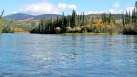 Yukon canoeing: Big Salmon River