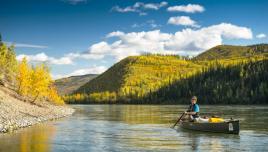 Fall colours at Yukon River