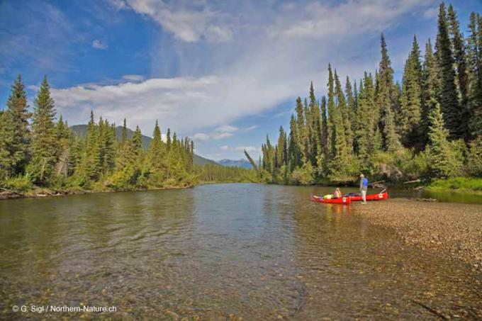 Guided canoe trip | Yukon | Big Salmon River | Nature ...