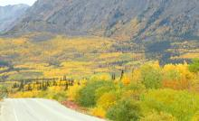 Indian Summer in Yukon