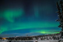 Aurora hunting Canada with Nature Tours of Yukon
