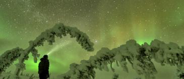 aurora viewing at christmas - Nature Tours of Yukon