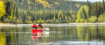 Big salmon River canoe trip nature tours of yukon